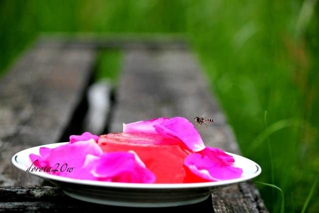 galaretka z truskawek i róży