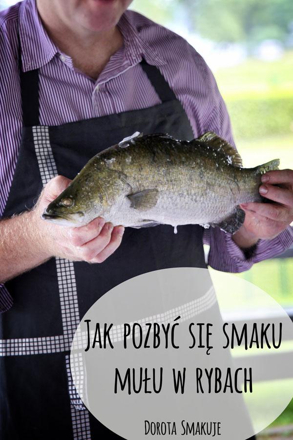 Jak pozbyc sie smaku mułu w rybach