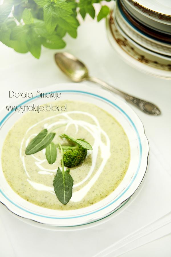 Zupa krem szczawiowo – brokułowa