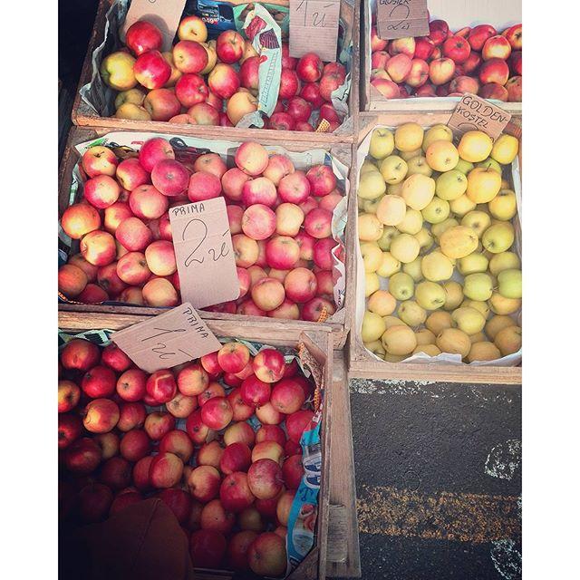 jakie_jablka_na_sok