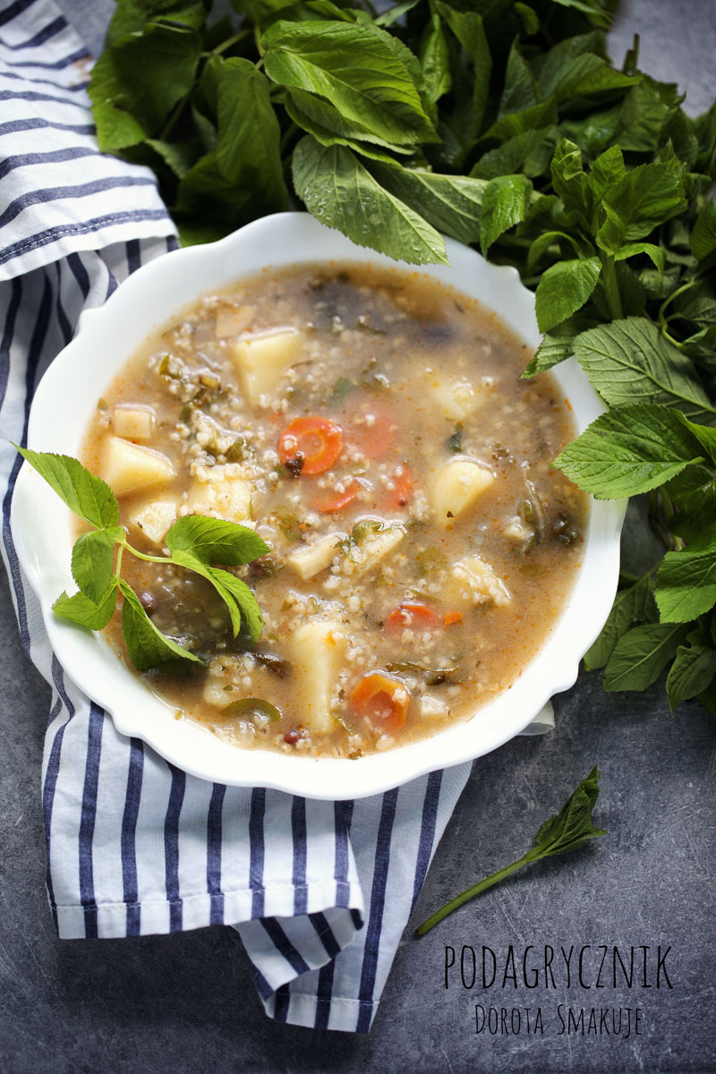 Zupa z podagrycznikiem